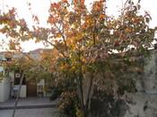 2 otaqlı ev / villa - Biləcəri q. - 145 m² (19)