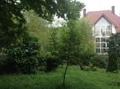 7 otaqlı ev / villa - Quba - 350 m² (7)