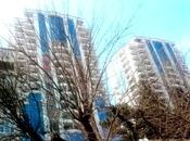 3-комн. новостройка - Ясамальский р. - 168 м²