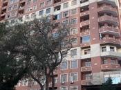 4 otaqlı yeni tikili - Nəsimi r. - 206 m²