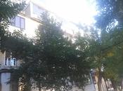 5-комн. вторичка - Сабаильский р. - 100 м²