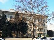 2-комн. офис - м. Сахиль - 40 м²