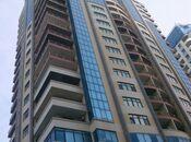 4-комн. новостройка - м. Сахиль - 234 м²