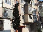 3-комн. вторичка - Хырдалан - 60 м²