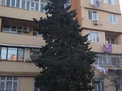 1 otaqlı köhnə tikili - Binəqədi r. - 34 m²
