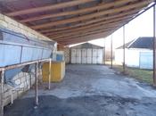 Obyekt - Zaqatala - 517 m² (3)