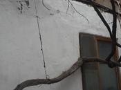 2-комн. дом / вилла - м. Низами - 25 м²