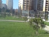 Гараж - м. Эльмляр Академиясы - 24 м²