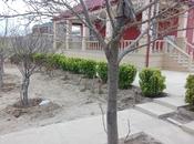 4-комн. дом / вилла - пос. Пиршаги - 250 м²