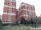 6-комн. новостройка - м. Низами - 306 м²