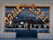 Obyekt - Şəki - 5000 m² (25)