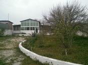 Bağ - Bilgəh q. - 180 m²