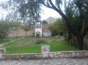 Torpaq - Badamdar q. - 6 sot