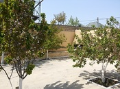 Torpaq - Sahil m. - 4.3 sot