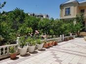 7 otaqlı ev / villa - Səbail r. - 450 m² (6)
