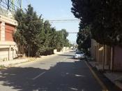 7 otaqlı ev / villa - Badamdar q. - 380 m² (24)