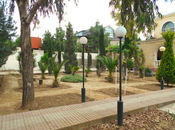 Bağ - Mərdəkan q. - 180 m² (6)