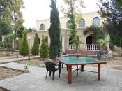 Bağ - Mərdəkan q. - 180 m² (19)