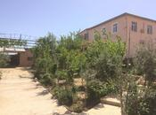 Bağ - Pirşağı q. - 170 m²