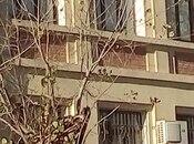 4-комн. офис - м. Джафар Джаббарлы - 24 м²