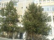 4-комн. вторичка - пос. Бадамдар - 177 м²