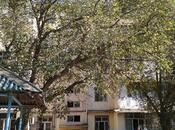 3 otaqlı köhnə tikili - Nizami r. - 65 m²