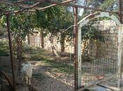4-комн. дом / вилла - Сумгаит - 100 м²