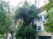 4 otaqlı köhnə tikili - İçəri Şəhər m. - 107 m²