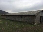 Obyekt - Oğuz - 6000 m² (4)