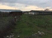 Obyekt - Oğuz - 6000 m² (6)
