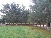 Bağ - Bilgəh q. - 150 m² (28)