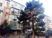 2 otaqlı köhnə tikili - Azadlıq Prospekti m. - 49 m²