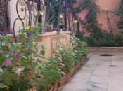 6 otaqlı ev / villa - Avtovağzal m. - 240 m² (22)