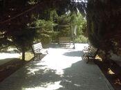 Bağ - Mərdəkan q. - 750 m² (22)