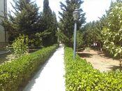 Bağ - Mərdəkan q. - 750 m² (17)