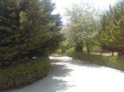 Bağ - Mərdəkan q. - 750 m² (23)