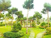 8 otaqlı ev / villa - Badamdar q. - 500 m² (15)