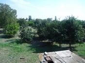 6 otaqlı ev / villa - Goranboy - 427.2 m² (10)