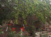 6 otaqlı ev / villa - Xudat - 240 m² (13)