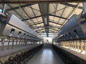 Obyekt - Xızı - 20000 m² (8)