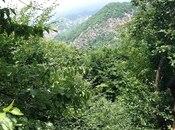 Torpaq - İsmayıllı - 300 sot (29)