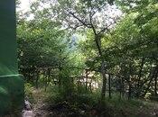 Torpaq - İsmayıllı - 300 sot (22)