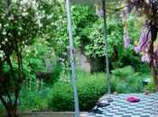 6 otaqlı ev / villa - İsmayıllı - 280 m² (36)