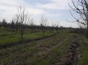Torpaq - Quba - 48 sot (2)