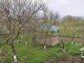 Torpaq - Şamaxı - 50 sot (13)