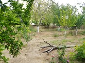 6 otaqlı ev / villa - Abşeron r. - 202 m² (10)