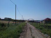 Torpaq - Şamaxı - 6 sot (7)