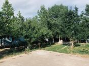 Obyekt - Şabran - 630 m² (6)