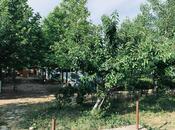 Obyekt - Şabran - 630 m² (5)