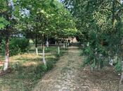 Obyekt - Şabran - 630 m² (16)